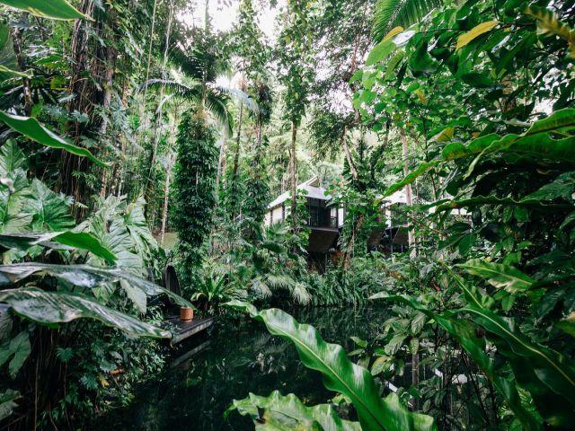Daintree Eco Lodge & Spa Angebot aufrufen